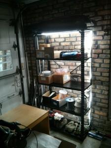 illuminated_shelves